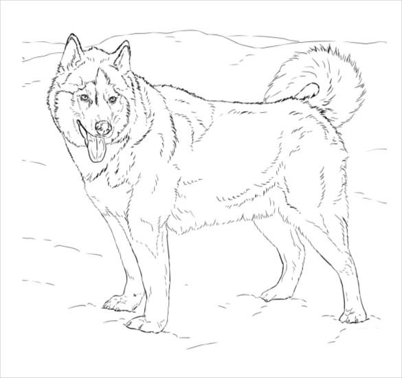 dog coloring page pdf free download