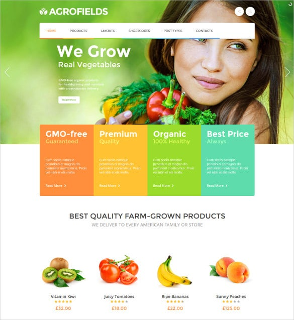 29 Grocery Store Website Themes Amp Templates Free
