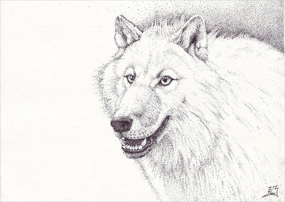 white wolf fine art drawing template