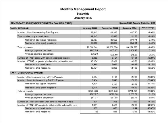 Nice PDF Format Monthly Management Report Template Throughout Monthly Report Format