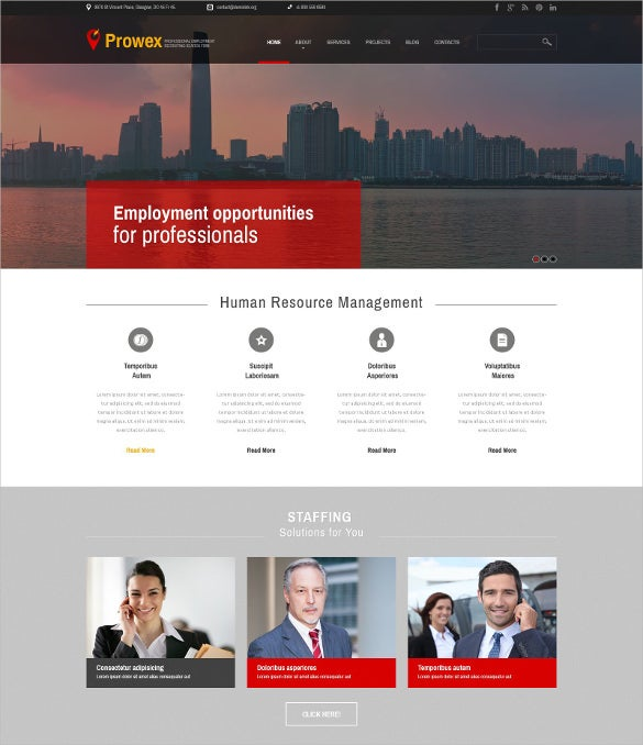 professional employment jobportal html5 wordpress theme