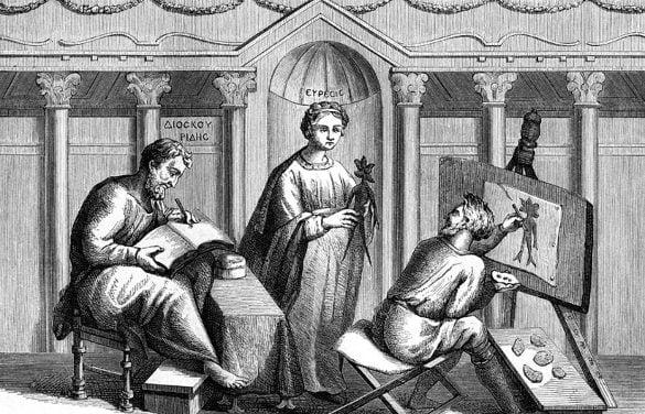 dioscorides ancient greek physician artwork