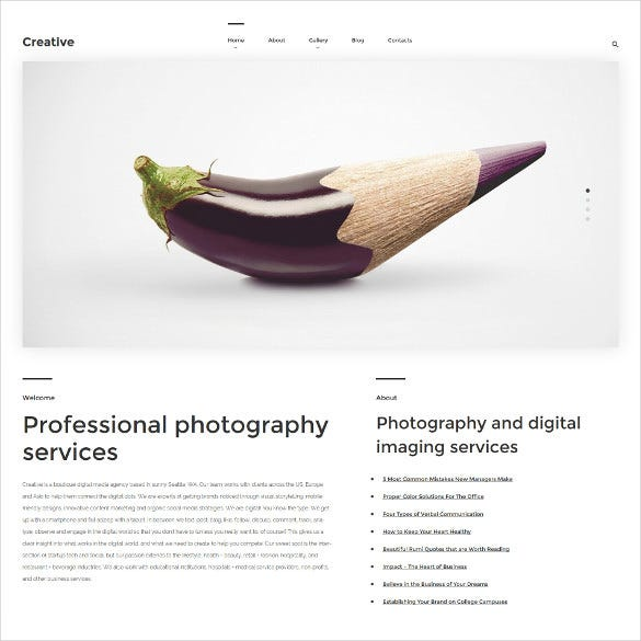 premium creative photography wordpress blog theme
