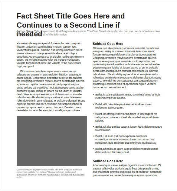 Fact Sheet Template   Free Word Pdf Documents Download  Free
