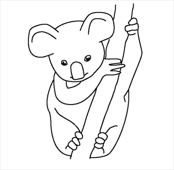 baby animal koala template download