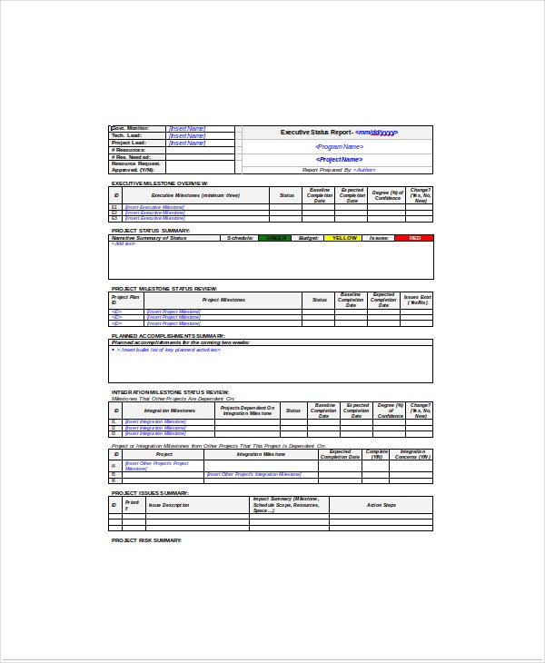 Project Executive Status Report Template