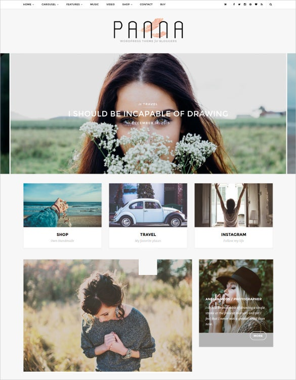 panna blog shop wordpress theme