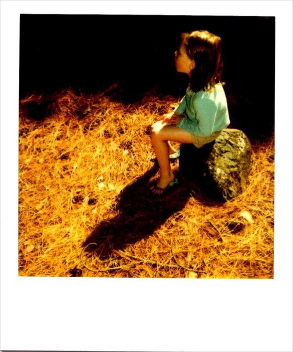bright orange polaroid photo template