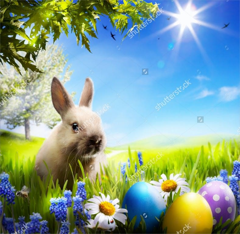 art little easter background bunny and easter eggs download 788x766