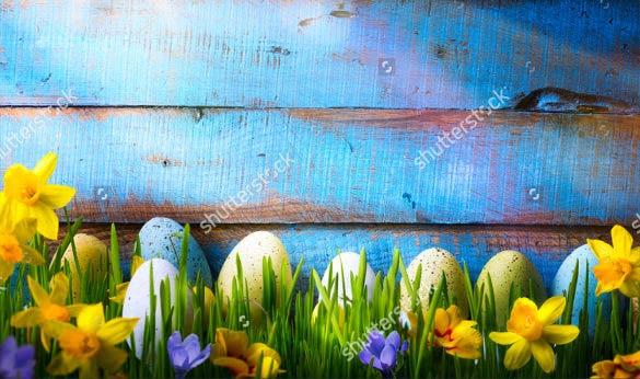 easter background with easter eggs and spring flowers on green grass download