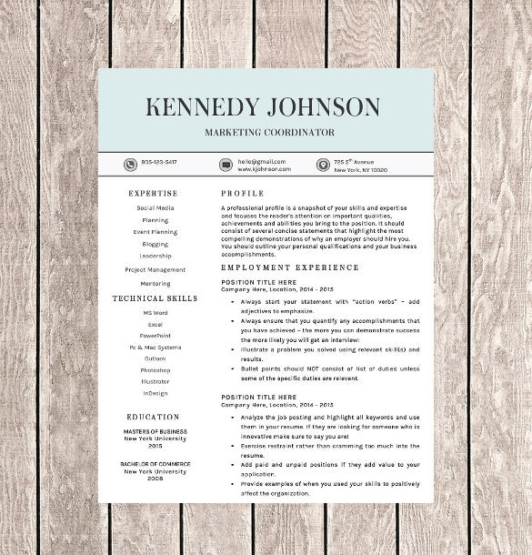 Word Professional One Page Resume Template  Single Page Resume