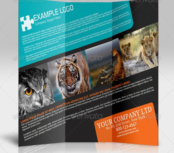 jungle tourism brochure instant download