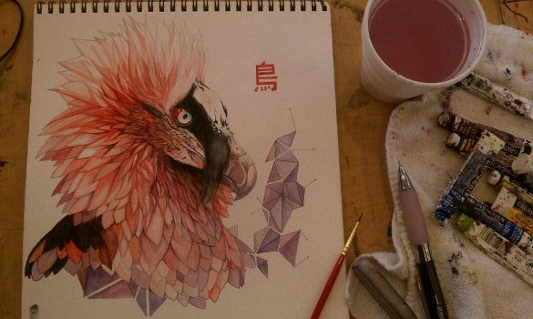 bearded vulture geometric bird art
