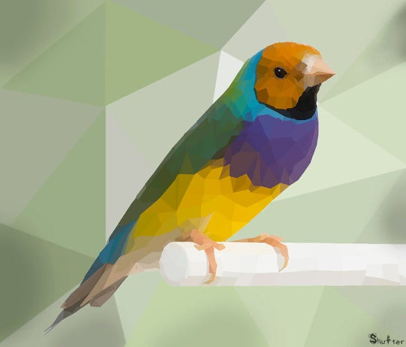 20  awesome geometric bird art