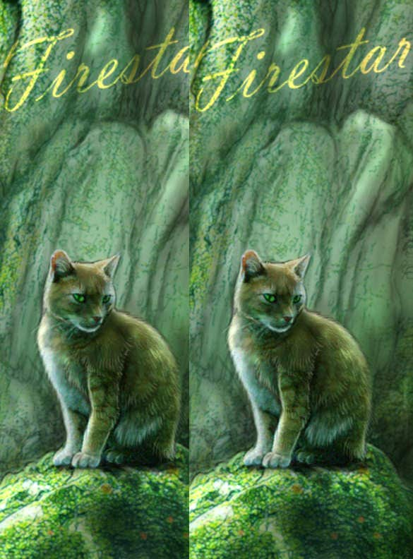 photo bookmark template with cat