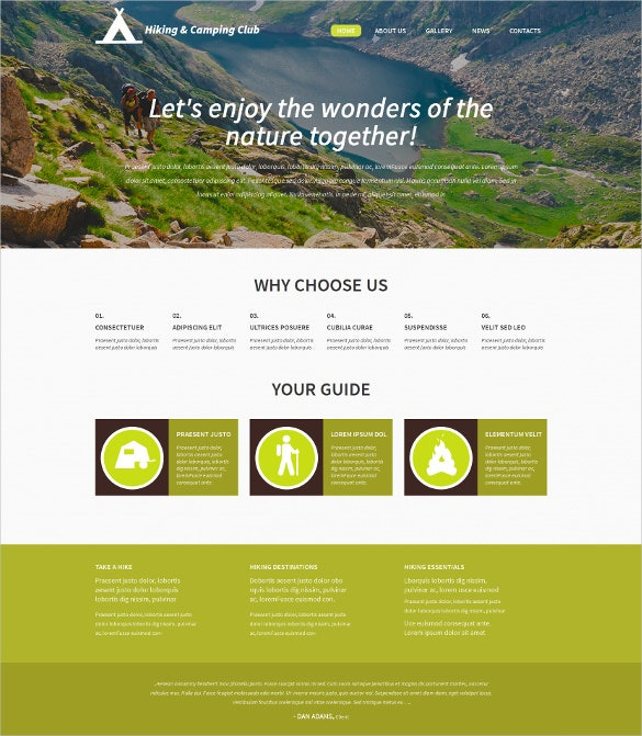 professionals travel tourism wordpress blogger theme