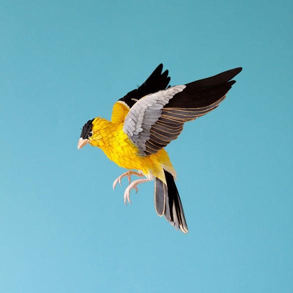 free colourful paper 3d bird sculpture
