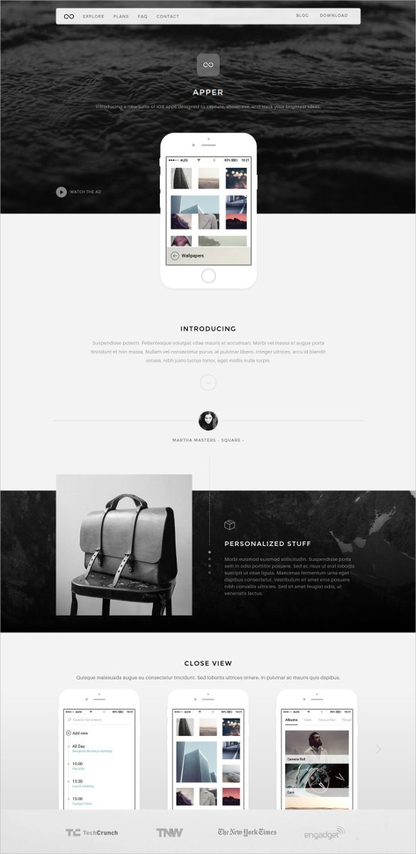 static wordpress website theme