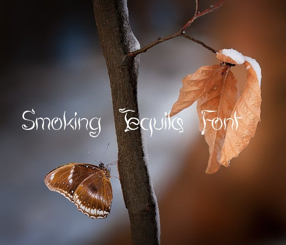 smoking tequila font free ttf format