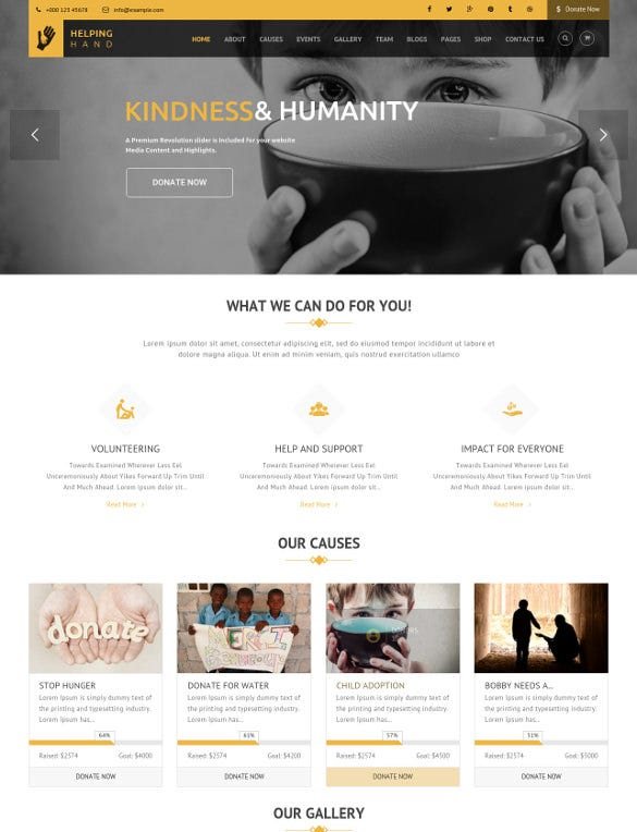 helping hand fundraising wordpress theme
