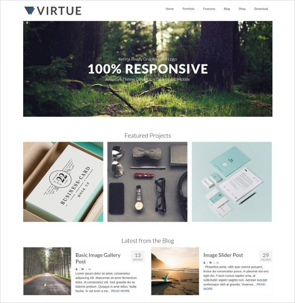 virtue free muti concept wordpress theme