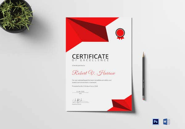 certificate of coaching excellence template