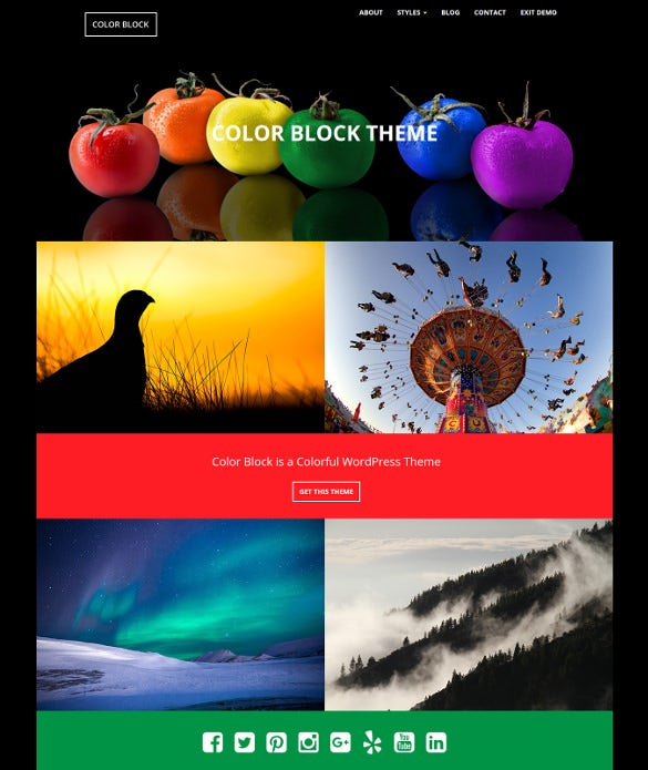 color block wordpress photography theme