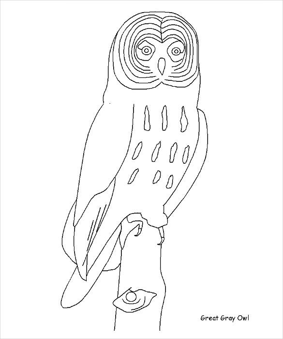 great grey owl template