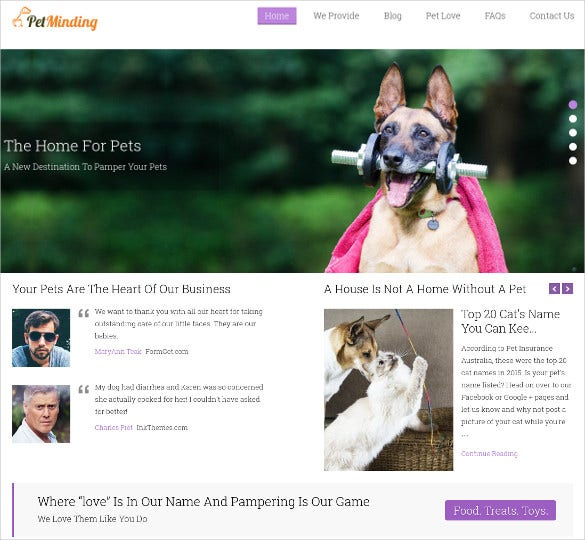 responsive animal pet veterinary wordpress html5 theme 49