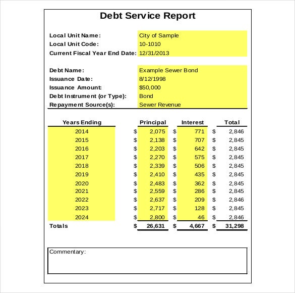 pdf format debt service report pdf template free