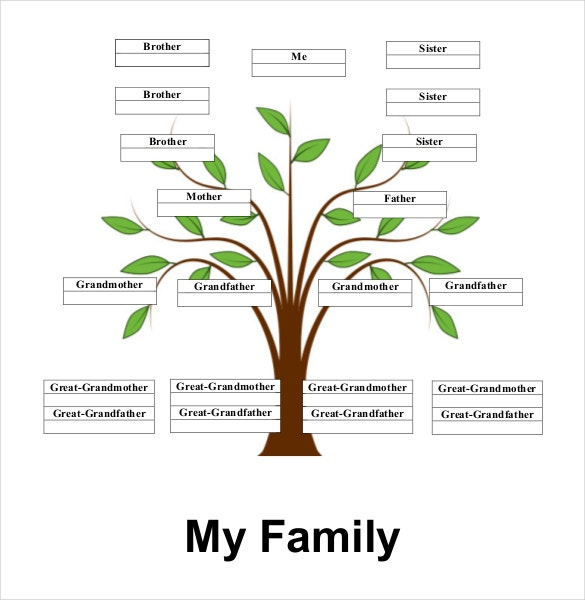 Simple family tree template 27 free word excel pdf for Family tree templates with siblings