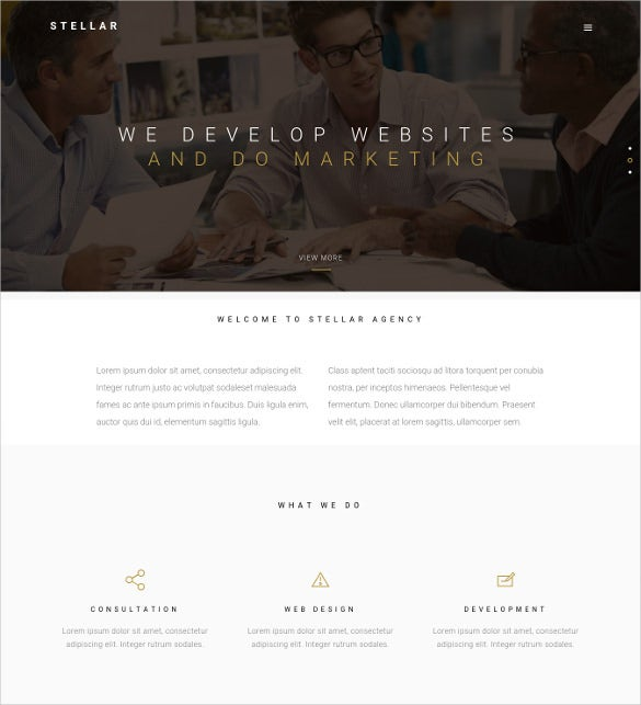 stellar one page multipurpose responsive wp theme