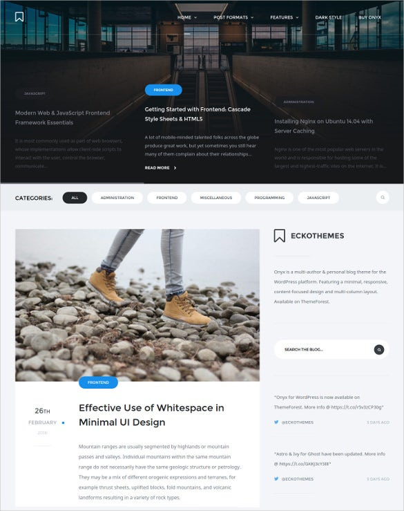 onyx responsive wordpress blog theme1