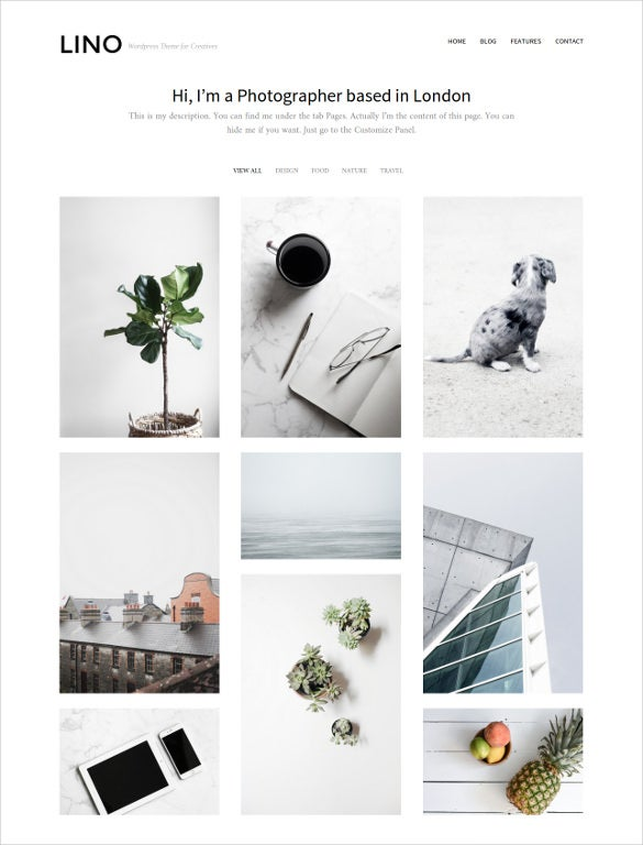 wordpress photographer portfolio theme