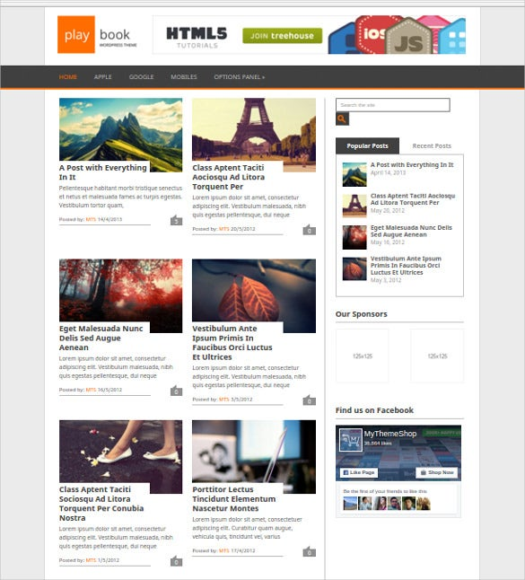 free playbook wordpress theme