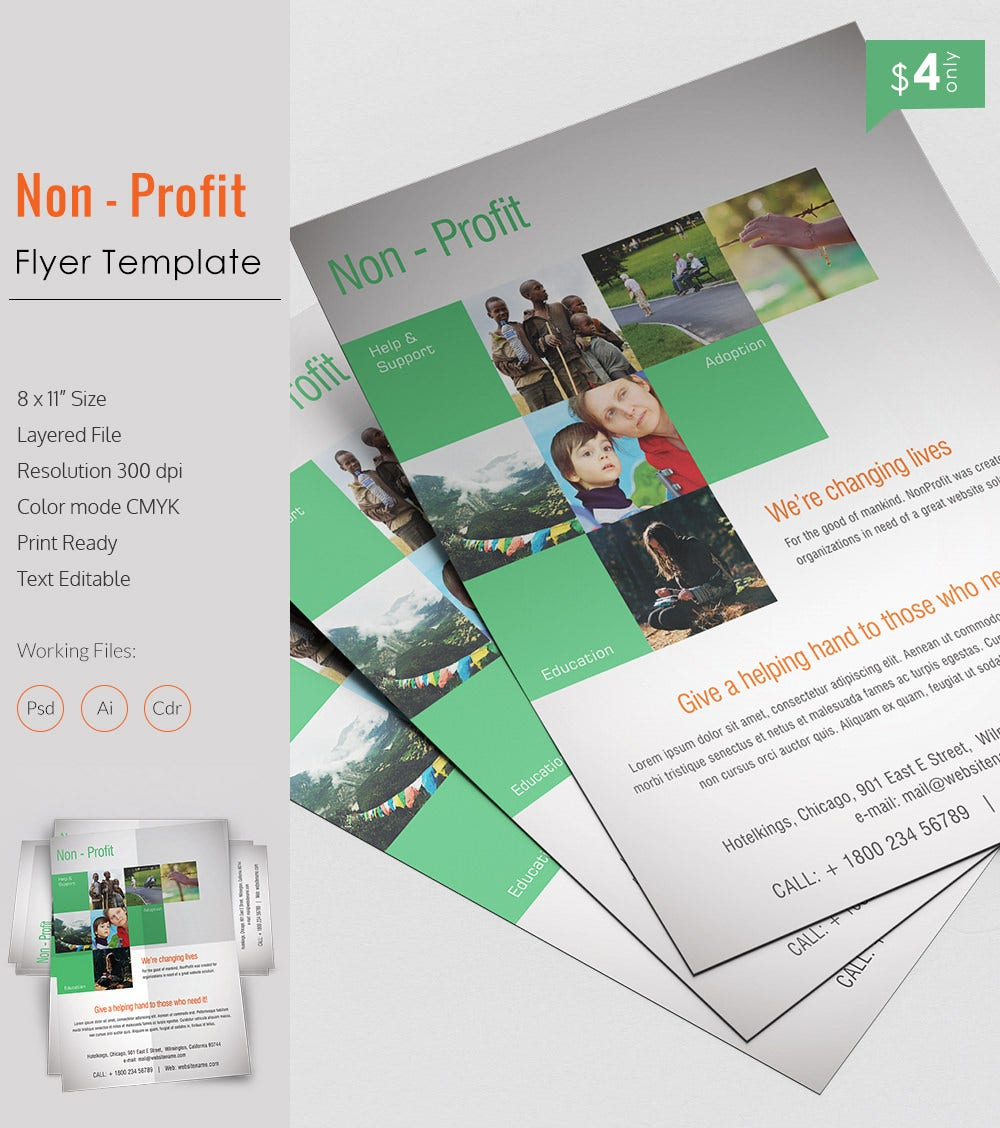 Admirable Non Profit Flyer Template