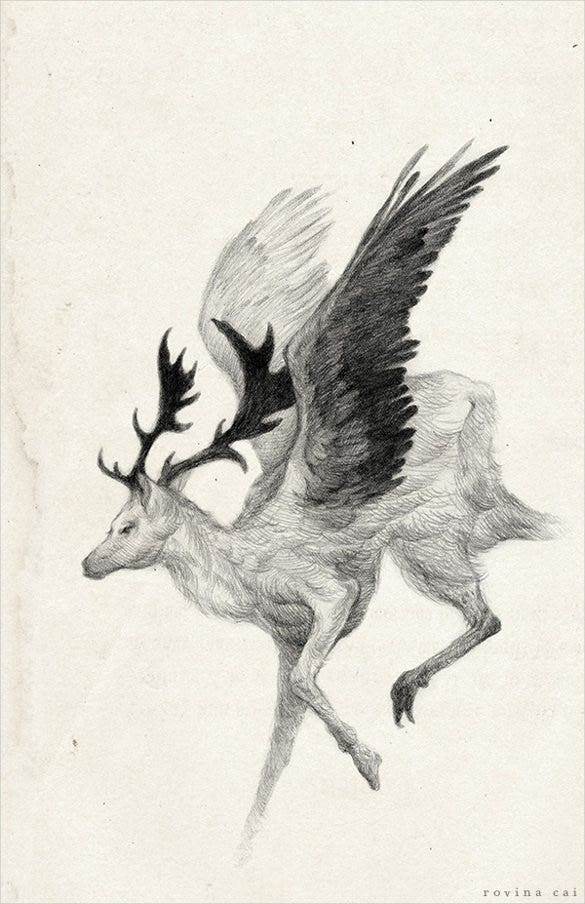 deer with wings drawing