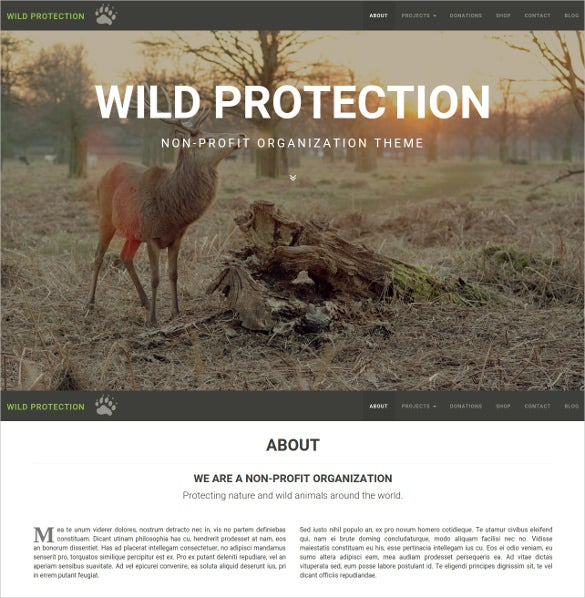 non profit environmental organization blog theme 493