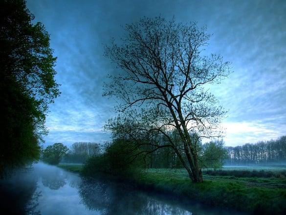 dark river nature wallpaper