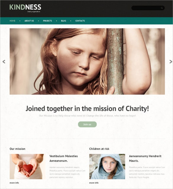 child charity non profit html5 wordpress theme 753