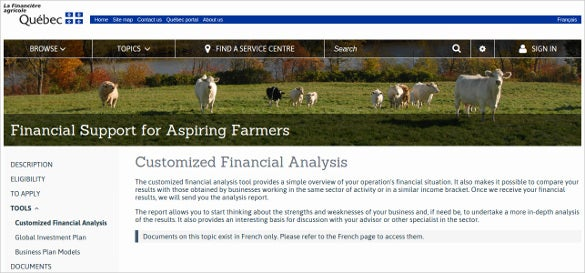 customized financial analysis tool download
