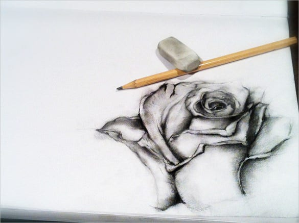 beautiful black rose drawing
