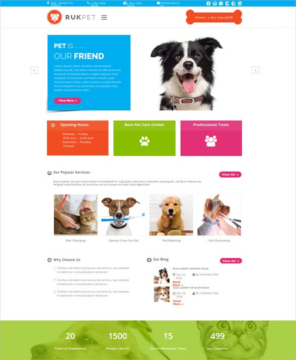 animal pet care services wordpress template