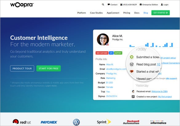 woopra real time web analytics tracking