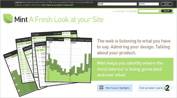 mint real time stats wen analytic tool