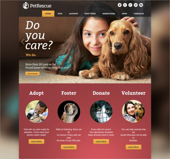 pet animals shelter charity wp theme