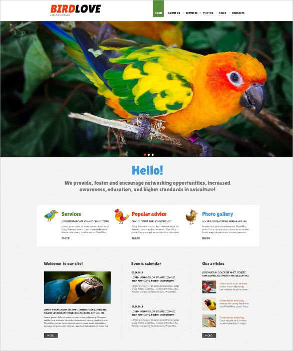 animal pet birds responsive joomla template
