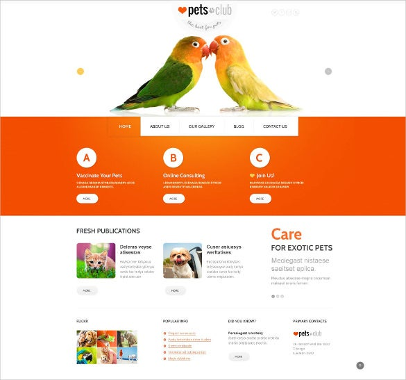 animals pets responsive joomla template