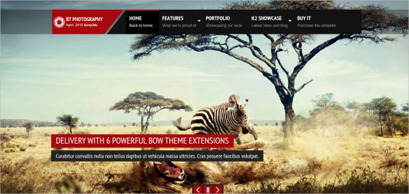 animal pet photography joomla template