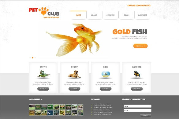 animals pet club joomla theme